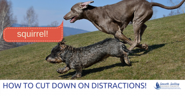 3 Biggest Strategies to Cut Down Distractions and Be More Productive